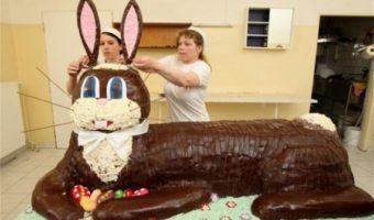 Enormous Easter Bunny Cake~EEKS!