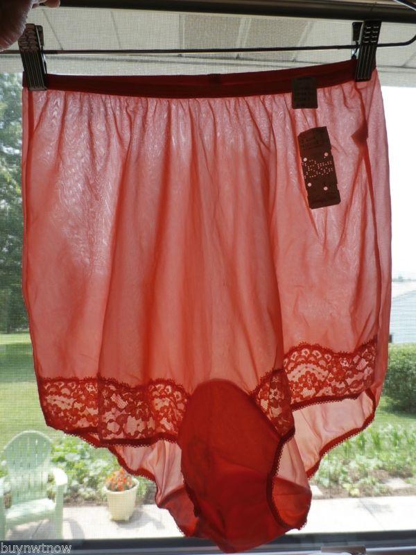 Vintage Vanity Fair women's sheer nylon, panties